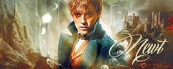 Fantastic Beasts: A Brave New World